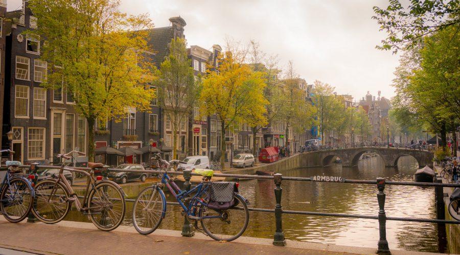 Traduzioni giurate italiano olandese: l'importanza di una traduzione perfetta