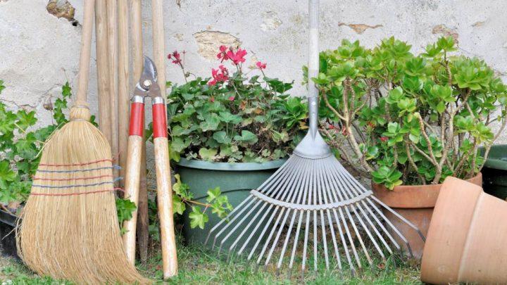 Giardinaggio: 5 attrezzi indispensabili